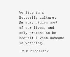 We live in a butterfly culture. We stay hidden most of our lives, and only pretend to be beautiful when someone is watching.