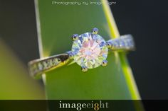 engagement ring wedding