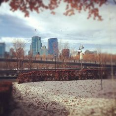 The view from the office today. Calgary can't decide if it is winter or fall....