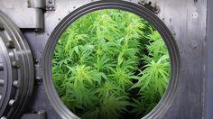 Bank Nixes Marijuana Firm's Crowdfunding Hopes #HighFinanceReport