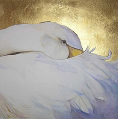 Swan with head tucked beneath wing, waiting. Watercolour and antique gold leaf by Jackie Morris. June 2007