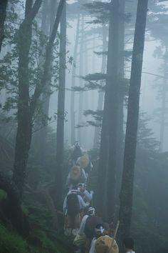 Buddhist pilgrims making their way to a shrine. Mt. Omine, Japan