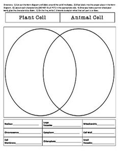 Plant Animal Cell Venn Diagram Science Ideas Animal Cell