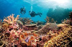 #JetsetterCurator  Great Barrier Reef, Australia