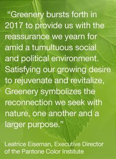 The Color of the Year for 2017 has been announced by global color mavens Pantone. It's Greenery, hex code Pantone chooses a color each year. Color Of The Year 2017 Pantone, Pantone Color, Pantone Greenery, New Beginnings, Shades Of Green, Color Trends, Color Inspiration, Color Schemes, Color Stories