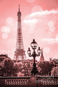"""The Trip Eiffel is really a symbol of Paris. It is the most identifiable function of the city and, in reality, the world. Located in the arrondissement, the Eiffel Tower was a marvel of """"modern-day"""" engineering. Pink Paris, I Love Paris, Eiffel Tower Photography, Paris Photography, Nature Photography, Paris Images, Paris Pictures, Roses Tumblr, Paris Torre Eiffel"""