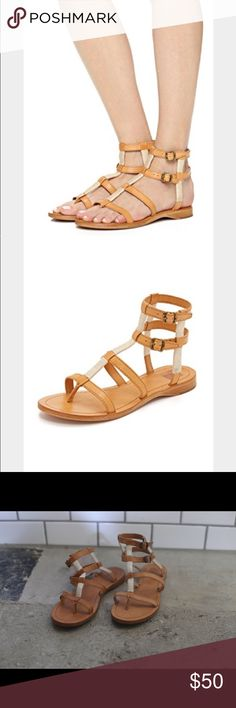 Frye gladiator sandals Frye Rachel Gladiator sandals. Size 8.5. These haven't been worn but one is a slightly darker color than the other, as you can see in the photos. It's hardly noticeable when on but I am selling them for a reduced price to account for this. Frye Shoes Sandals