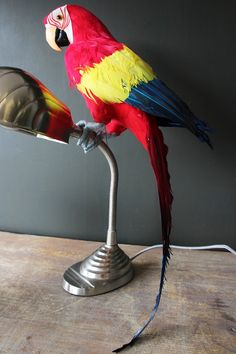 Faux Red Parrot - View All - Home Accessories