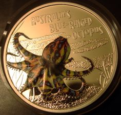 Australia's Blue-Ringed Octopus Painted Coin