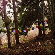 Prayer flags at Earth Sanctuary.