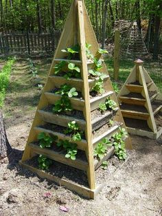 Strawberry or Herb tower. A compact, pyramid shaped design that is perfect for those with little room for a garden. Can even be placed on a deck or patio. How about a planter on each side of the driveway covered in flowers? ...or strawberries??!