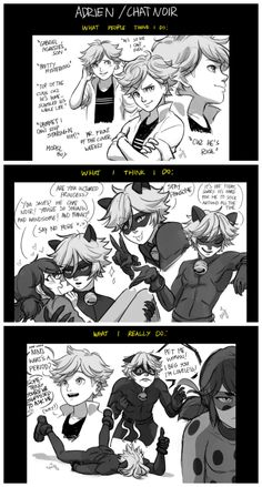 Adrien and Chat Noir as seen by himself and others. (Miraculous Ladybug, lol)