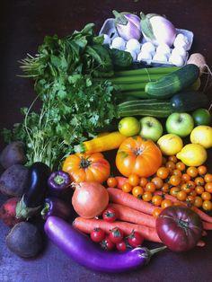 Full spectrum farmers market haul.  (fresh juice and ratatouille for days!) Veggies veggies veggies!