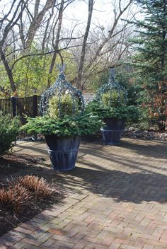 winter-containers-with-lighted-topiary-forms.jpg