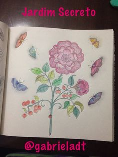 Livro Jardim Secreto Book Secret Garden