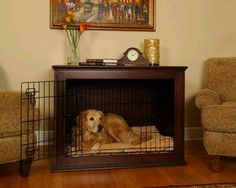 So cute to still let your pup have a kennel while incorporating it into your house!