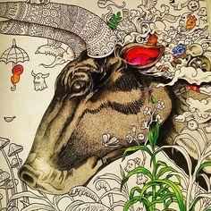 #animorphia #animorphiacoloringbook #kerbyrosanes #adultswhocolor #adultcoloringbooks #doodles #doodleinvasion