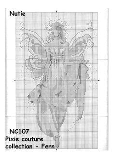 NC 107_Fern_2/3