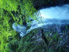払沢の滝(20120505)