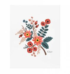 Coral Botanical Print