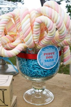 first birthday party in park with snips snails puppy dog tails theme cotton candy twisted tails