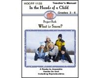 What is Snow? Find out with this fun AND educational lapbook from In the Hands of a Child!