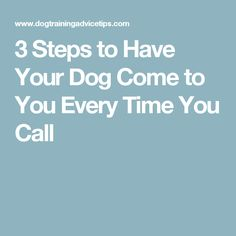 3 Steps to Have Your Dog Come to You Every Time You Call