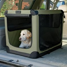 Just found this Soft Dog Crates - Folding Nylon Travel Crate -- Orvis on Orvis.com! You can also use their Nylon Travelling Crate in the home as well. So it serves 2 purposes for you!