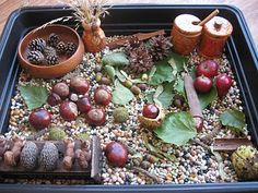 10 Awesome sensory bin ideas for fall--apples, pumpkins, leaves, etc