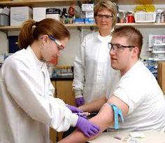 Phlebotomy best undergraduate degrees
