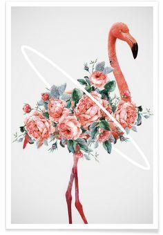 Flamingo - Dániel Taylor - Premium Poster