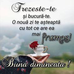 Clara Alonso, Coffee Flower, Morning Greetings Quotes, Facebook, Motto, Good Morning, Motivation, Wordpress, Interior