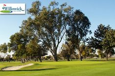 $28 for 18 Holes with Cart and Lunch at Willowick #Golf Course in Santa Ana ($56 Value. Expires January 15, 2016!)  Click here for more info: https://www.groupgolfer.com/redirect.php?link=1sqvpK3PxYtkZGdlcHmo