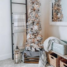 The Ultimate Christmas Tree Buying Guide