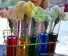 This classic classroom experiment is also a fun way to add more color to garnishes!  Carnation petals are edible! Read the linked article (be sure any pesticides or chemicals that were used are suited to food crops--to make sure, grow your own)!!!  **http://paintcutpaste.com/color-changing-carnations/