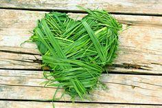 Srdíčko z trávy  Pro výrobu tohoto dekorativního srdíčka budete potřebovat především trávu. Nejvhodnější tráva pěkně dlouhá, můžete zkusit použít i mladé obilí. Jako základ srdíčka dobře poslouží srdce vystřižení z kartonu. Pak už jen stačí jej křížem krážem omotávat stébly trávy, dokud se vám nepodaří dosáhnout správného tvaru. Srdíčko pak můžete ozdobit kvítky a připevnit k němu stužku k zavěšení Timeline Photos, Herbs, Herb, Medicinal Plants