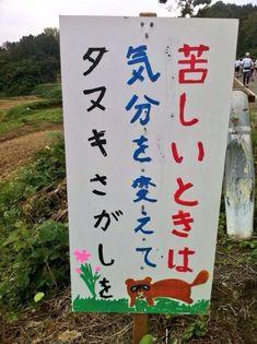 苦しいときは気分を変えてタヌキ探しを | @Atsuhiko Takahashi (アットトリップ)  (via http://attrip.jp/125798/ )