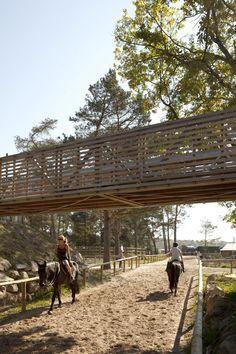 Le Grand Stade. Joly Loiret. Floresta de Fontainebleau, França. 2012.