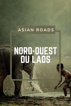 Partez à la découverte du Nord-Ouest du Laos, avec notamment Sainyabuli et son centre de conservation des éléphants. Luang Prabang, Laos, Destination Voyage, Conservation, Centre, Movie Posters, Movies, North West, Films
