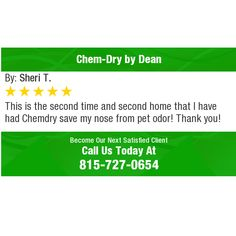 This is the second time and second home that I have had Chemdry save my nose from pet...