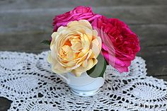 A china teacup holding a bouquet of yellow and red roses. http://www.dreamstime.com/Melodyanne_portfolio_pg1#res12506583