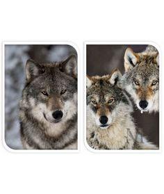 Pled koc Wolf a