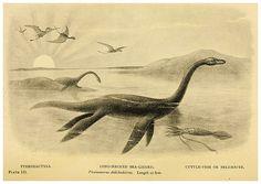 002- Extinct monsters…1896- H. N. Hutchinson