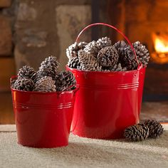Color-changing pine cones—just toss 'em into your fire and they'll turn the flames green and blue.