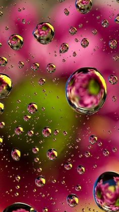 Shared by March! Find images and videos about water and wallpapers on We Heart It - the app to get lost in what you love. Glitter Phone Wallpaper, Colourful Wallpaper Iphone, Bubbles Wallpaper, Flowery Wallpaper, Flower Background Wallpaper, Flower Phone Wallpaper, Phone Screen Wallpaper, Butterfly Wallpaper, Cute Wallpaper Backgrounds