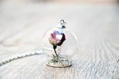 dried flowers vial por SiamesaProject