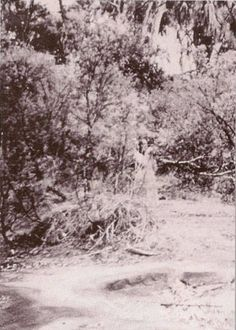This photo was taken at Corroboree Rock at Alice Springs, Northern Territory, Australia in 1959. What does not seem to be a trick of light and shadow is a human form, semi-transparent, wearing what looks like a long white dress or gown. The figure seems to be holding something up to it's face. Real Ghost Pictures, Ghost Photos, Creepy Pictures, Ghost Images, Angel Pictures, Scary Places, Haunted Places, Scary Things, Strange Places