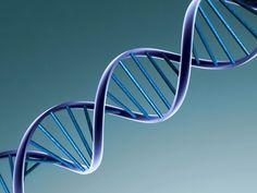 BioOrbis: Microorganismos Desafiam a Lei do DNA