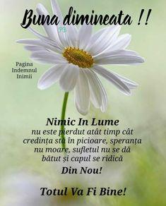God Prayer, Emoticon, Motto, Prayers, Faith, Messages, Quotes, Image, Buddha