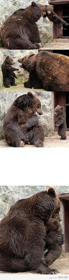 parenting, bear style